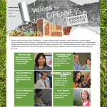 Voices website screenshot